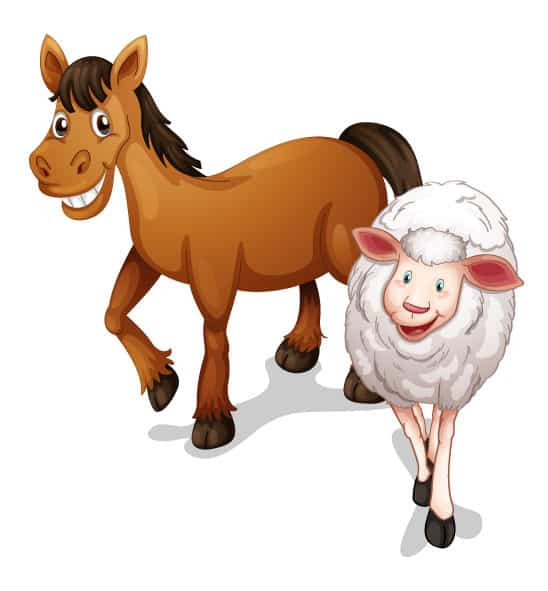 cute horse and sheep farm animals