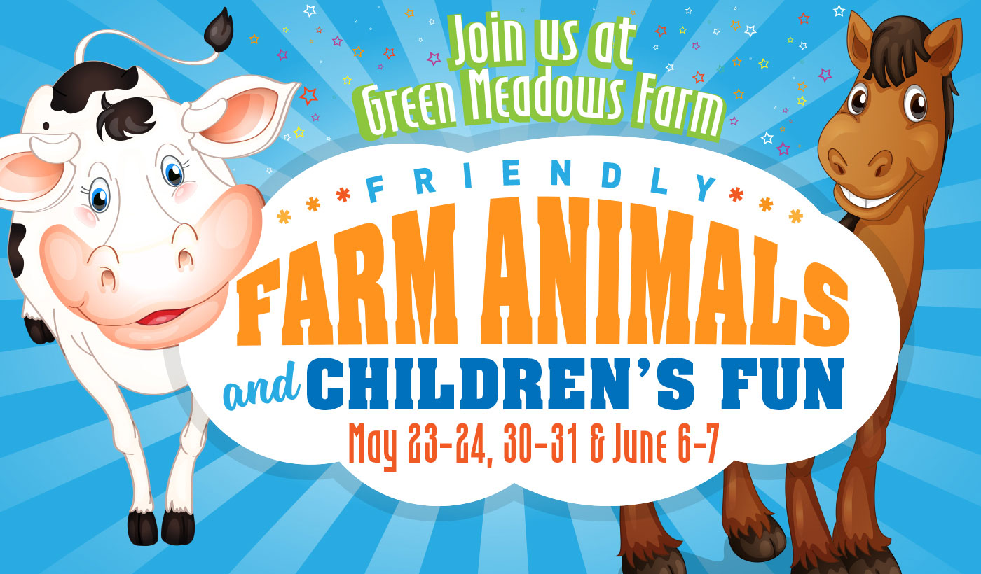 friendly farm animals event green meadows farm brooklyn ny may june 2020